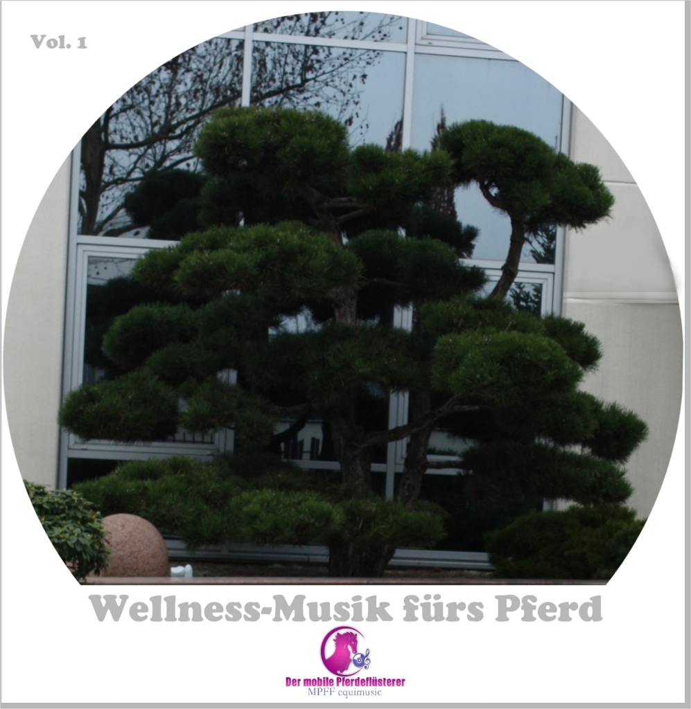Wellness_DVD_1